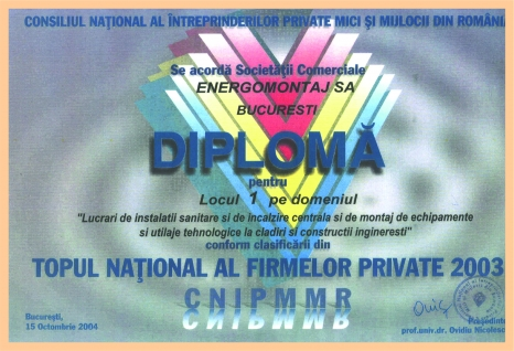 Topul National al Firmelor Private 2003